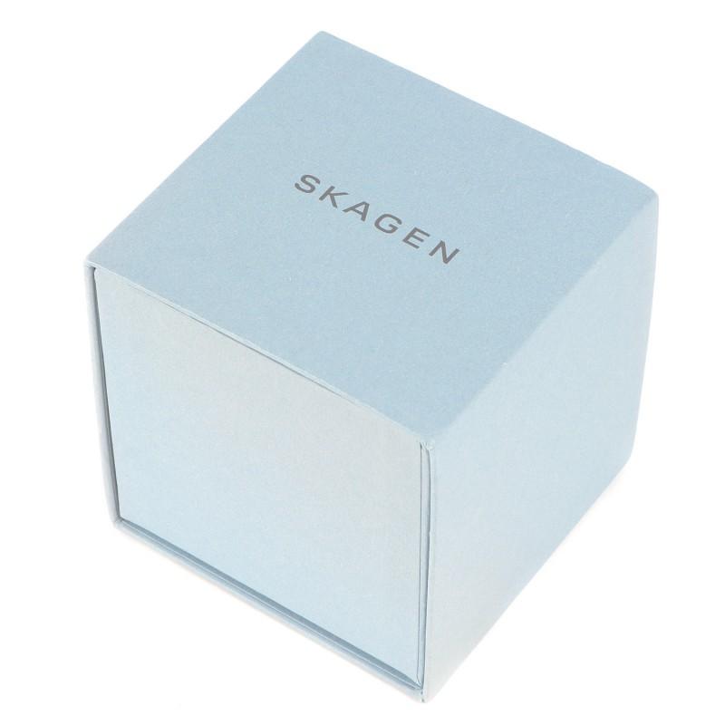 SKW6234  наручные часы Skagen  SKW6234
